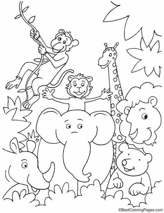 historietas de animales en la selva