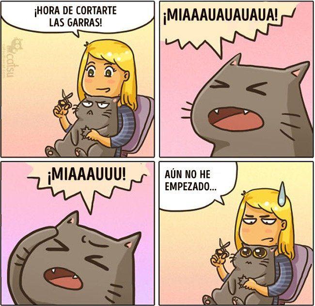 comics de gatos cortos