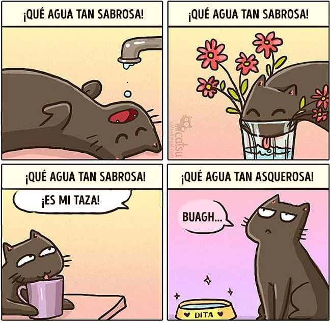 comics de gatos pinterest